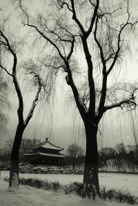 winter.beijiing.China