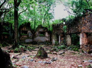 ruins. solitary block.French.New.Guiana
