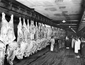 chicago.slaughterhouse.1900s