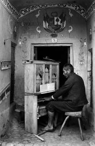 chambi-martin-peru1935