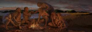 human-evolution-evidence